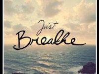 Im Moment scheint sich alles besonders schnell zu ändern… bleib positiv und mach mit.