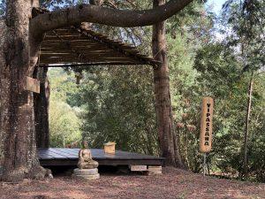 Reguengo Meditation